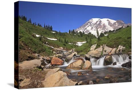 Mount Rainier and Mountain Stream, Washington State, USA-Mark Taylor-Stretched Canvas Print
