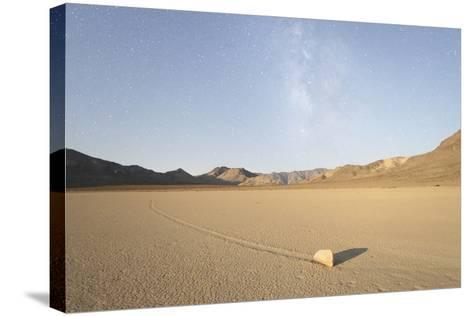 Sliding Stone of Racetrack Playa, Taken at Night by Moonlight, with Milky Way, Death Valley, USA-Mark Taylor-Stretched Canvas Print