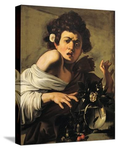 Boy Bitten by a Lizard-Caravaggio-Stretched Canvas Print