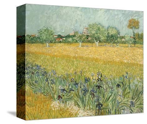 Field with Irises Near Arles-Vincent van Gogh-Stretched Canvas Print