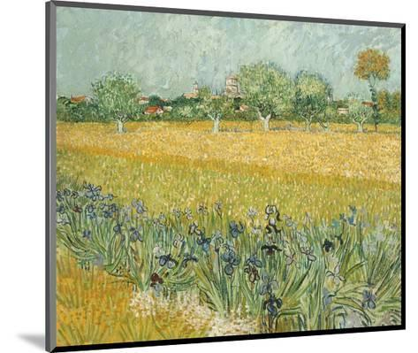 Field with Irises Near Arles-Vincent van Gogh-Mounted Giclee Print