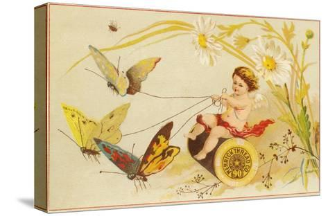 Butterflies Pulling Cherub on Thread Spool Chariot--Stretched Canvas Print