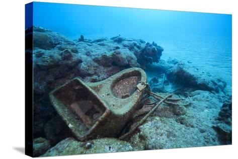 Toilet Bowl Resting on Coral Reef in Dominican Republic-Paul Souders-Stretched Canvas Print