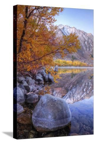 Autumn Landscape at June Lake-Vincent James-Stretched Canvas Print