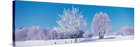 Winter Scenic Germany--Stretched Canvas Print