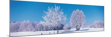 Winter Scenic Germany--Mounted Photographic Print