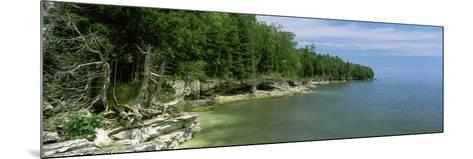 Trees at the Lakeside, Cave Point County Park, Lake Michigan, Door County, Wisconsin, USA--Mounted Photographic Print