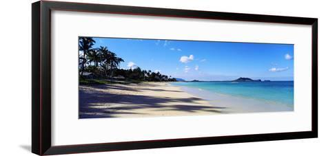 Palm Trees on the Beach, Lanikai Beach, Oahu, Hawaii, USA--Framed Art Print