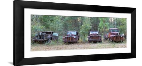 Old Rusty Cars and Trucks on Route 319, Crawfordville, Wakulla County, Florida, USA--Framed Art Print
