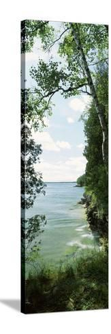 Trees at the Lakeside, Cave Point County Park, Lake Michigan, Door County, Wisconsin, USA--Stretched Canvas Print