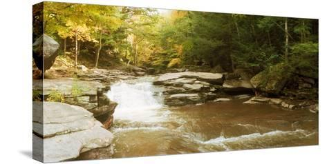 Kaaterskill Falls Stream Through the Forest of the Catskill Mountains, New York State, USA--Stretched Canvas Print
