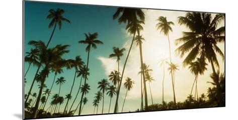 Palm Trees Along the Beach in Morro De Sao Paulo, Tinhare, Cairu, Bahia, Brazil--Mounted Photographic Print