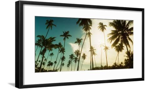 Palm Trees Along the Beach in Morro De Sao Paulo, Tinhare, Cairu, Bahia, Brazil--Framed Art Print