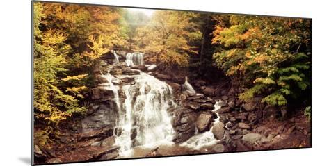 Kaaterskill Falls Stream Through the Forest of the Catskill Mountains, New York State, USA--Mounted Photographic Print