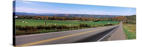 Road Passing Through a Field, Finger Lakes, New York State, USA--Stretched Canvas Print