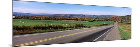 Road Passing Through a Field, Finger Lakes, New York State, USA--Mounted Photographic Print