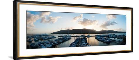 Boats at a Marina at Dusk, Shangri-La Hotel, Cairns, Queensland, Australia--Framed Art Print
