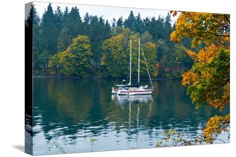 Sailboats in a Lake, Washington State, USA--Stretched Canvas Print