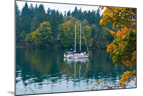 Sailboats in a Lake, Washington State, USA--Mounted Photographic Print
