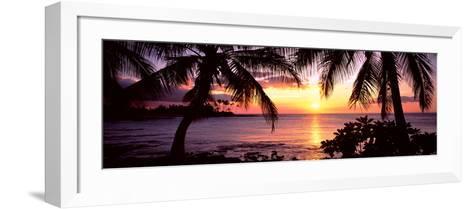Palm Trees on the Coast, Kohala Coast, Big Island, Hawaii, USA--Framed Art Print