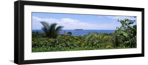 Manuel Antonia National Park Nr Quepos Costa Rica--Framed Art Print