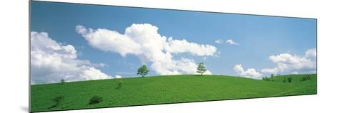 Grassland with Blue Sky and Clouds--Mounted Photographic Print