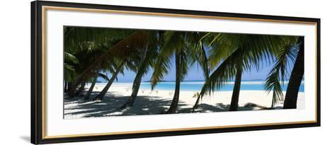 Palm Trees on the Beach, Aitutaki, Cook Islands--Framed Art Print