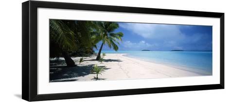 Palm Trees on the Beach, Tapuaetai, Aitutaki, Cook Islands--Framed Art Print