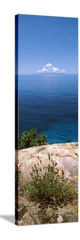 Plants Growing on the Rocks on North Island with Praslin Island in the Background, Seychelles--Stretched Canvas Print