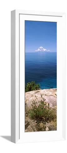 Plants Growing on the Rocks on North Island with Praslin Island in the Background, Seychelles--Framed Art Print