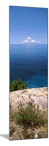 Plants Growing on the Rocks on North Island with Praslin Island in the Background, Seychelles--Mounted Photographic Print