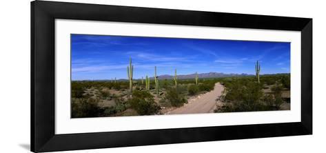 Rugged Road in Sonoran Desert Arizona USA--Framed Art Print