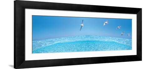 Birds Flying over Sea--Framed Art Print
