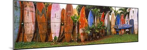 Arranged Surfboards, Maui, Hawaii, USA--Mounted Photographic Print