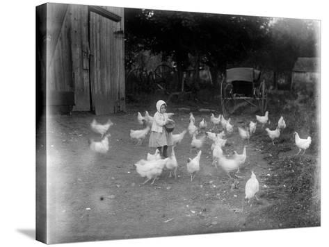 Girl Feeding Chickens--Stretched Canvas Print