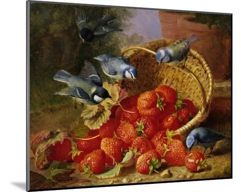 A Feast of Strawberries (Blue Tits) by Eloise Harriet Stannard-Eloise Harriet Stannard-Mounted Giclee Print