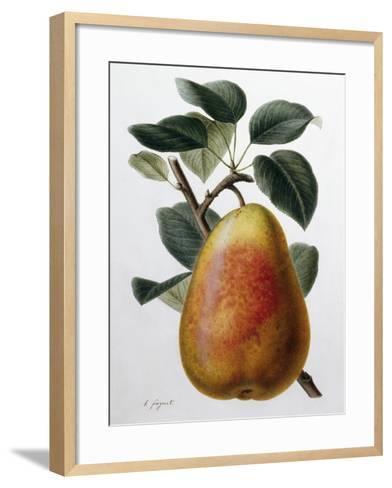 Study of a Pear-Adrienne Faguet-Framed Art Print
