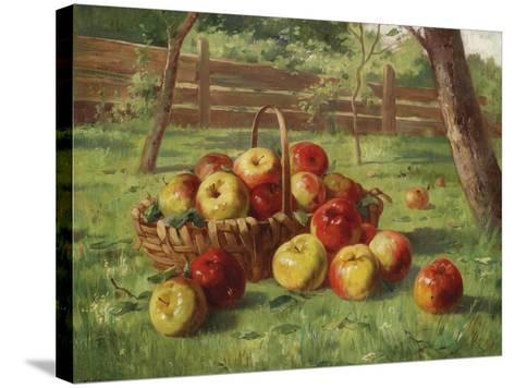 Apple Harvest-Karl Vikas-Stretched Canvas Print