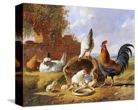 Spring Chickens-Albertus Verhoesen-Stretched Canvas Print