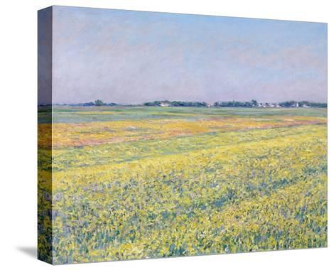 The Plain of Gennevilliers, Yellow Fields-Gustave Caillebotte-Stretched Canvas Print