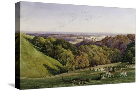 Evening in Arundel Park, Sussex, England-Charles James Adams-Stretched Canvas Print