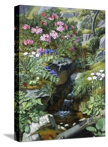 Alpine Flowers by a Stream-Otto Diderich Ottesen-Stretched Canvas Print