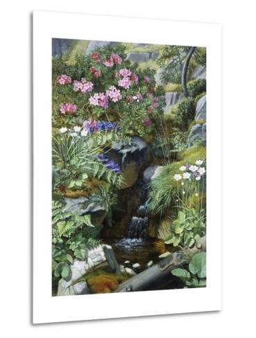 Alpine Flowers by a Stream-Otto Diderich Ottesen-Metal Print