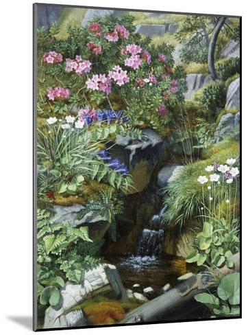 Alpine Flowers by a Stream-Otto Diderich Ottesen-Mounted Giclee Print