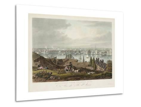 Baltimore from Federal Hill--Metal Print