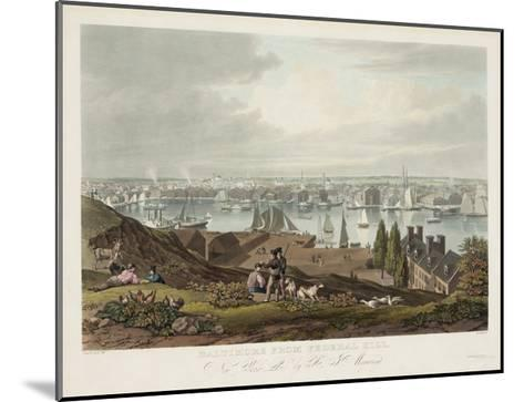 Baltimore from Federal Hill--Mounted Giclee Print