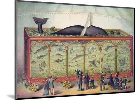 Lithograph of 19th Century Traveling Aquarium--Mounted Giclee Print