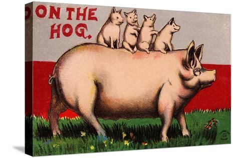 On the Hog Postcard--Stretched Canvas Print