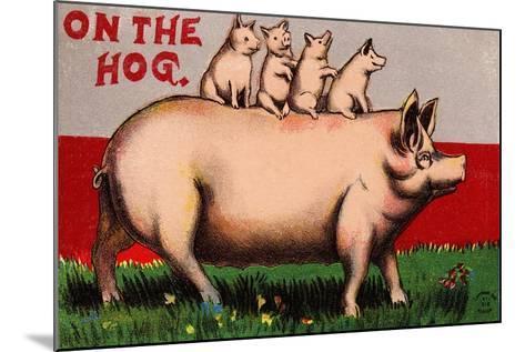 On the Hog Postcard--Mounted Giclee Print