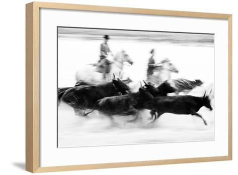 Black Bulls of Camargue and their Herders Running Through the Water, Camargue, France-Nadia Isakova-Framed Art Print